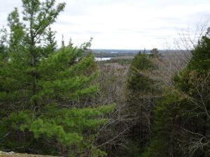 Aussicht Birch Island